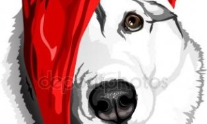 depositphotos_60580065-stock-illustration-dog-breed-siberian-husky-in